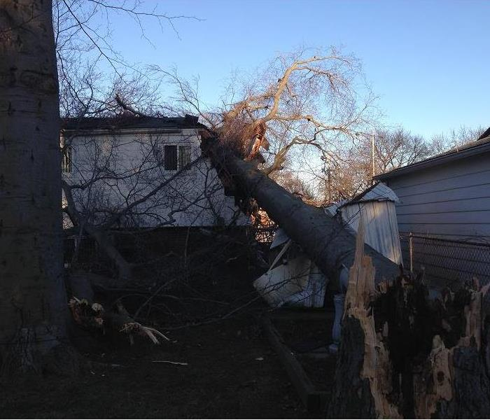 Wind Storm Damage in Farmington Hills, MI