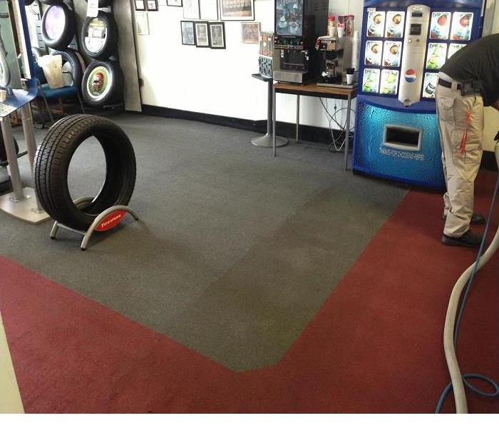 Farmington Hills Carpet Upholstery Cleaning Carpet