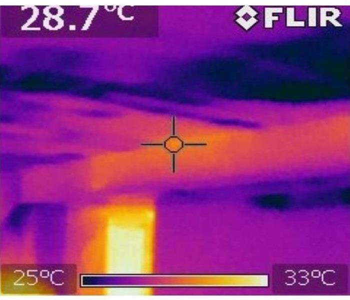 Thermal image camera captures a photo of a wet kitchen ceiling after a pipe break in the bathroom in Livonia.