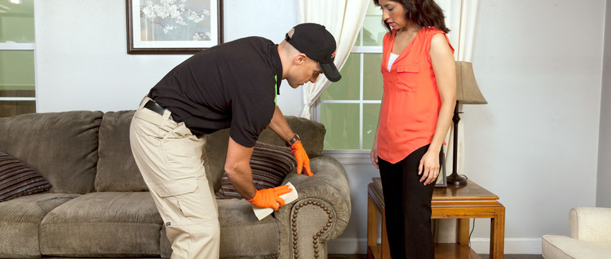 Farmington Hills, MI carpet upholstery cleaning