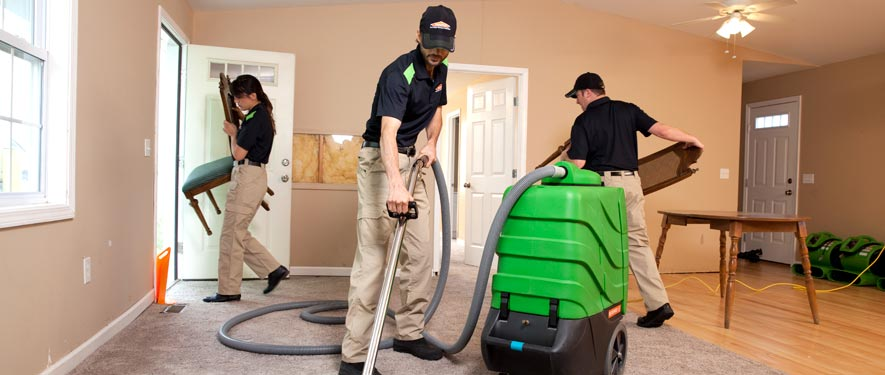 Farmington Hills, MI cleaning services