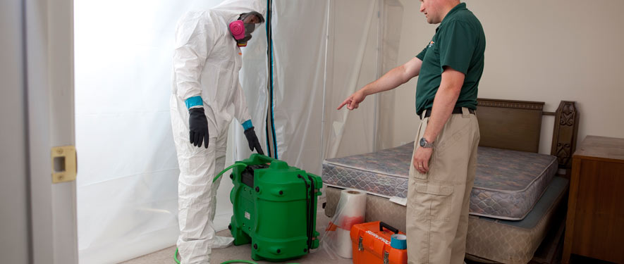 Farmington Hills, MI mold removal process